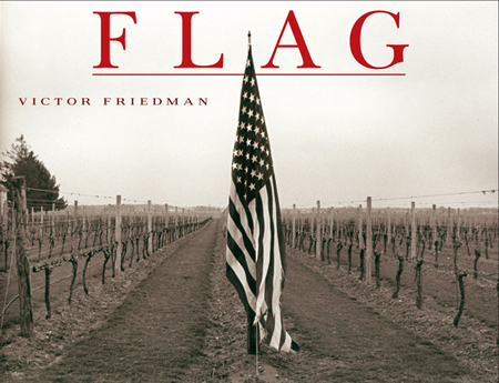 flag by victor friedman cover