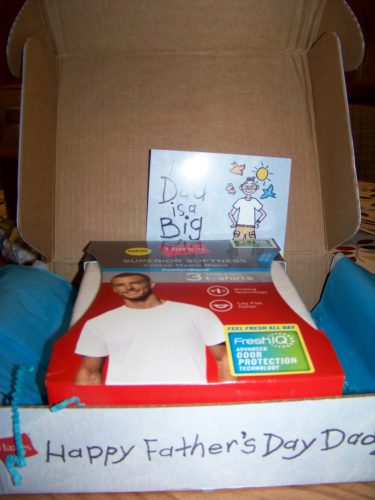 Hanes ComfortBlend T's  with Giveaway